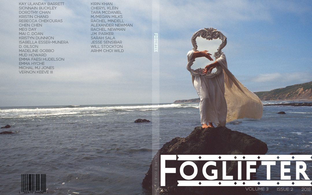 Foglifter Spring Submissions Close